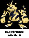 Pichu-Thunder Bolt-Pokemaniaco 1636784